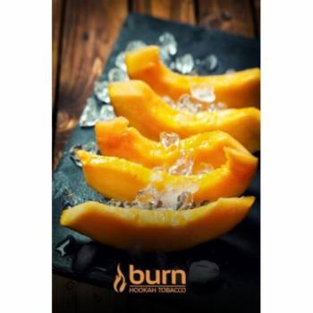 Купить Burn - Freeze Melon 100 г