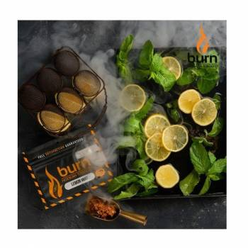 Купить Burn - Lemon Mint 100 г